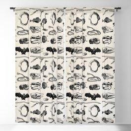 Animal Bones Blackout Curtain