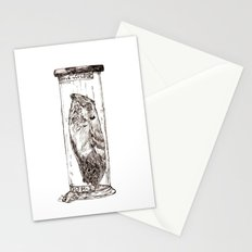 Frogmouth Stationery Cards