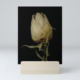 Piper - Dried Rose Scanography Portrait Mini Art Print