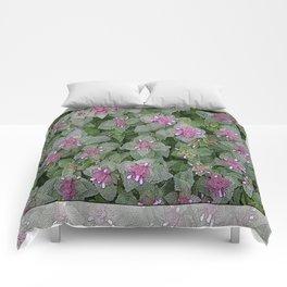 WILD SALVIA MAUVE AND GRAY GREEN Comforters