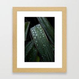 Bejeweled Blades Framed Art Print