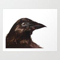 Mr Crow  Art Print