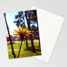 Spring dandelion Stationery Cards