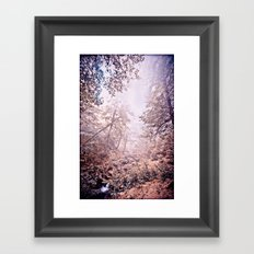 kli Framed Art Print