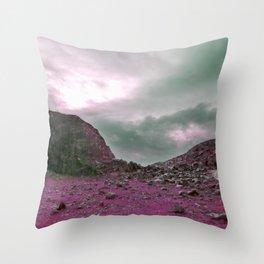Pink Norway - Norwegian Lapponian Gate Throw Pillow