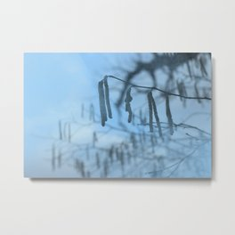 Blue branch Metal Print