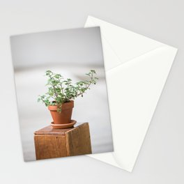 Potted Oregano Stationery Cards