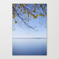 Spring. Canvas Print