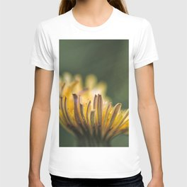 It touches the colors T-shirt
