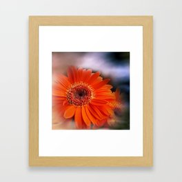 Gerbera and sky -mirrored- Framed Art Print