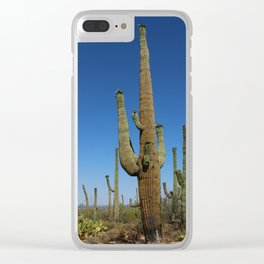 In The Sonoran Desert Clear iPhone Case