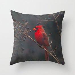 The Northern Cardinal Throw Pillow