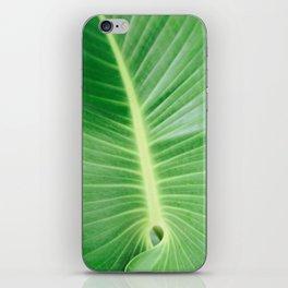 Palm CR iPhone Skin