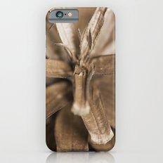 morior // No. 02 iPhone 6s Slim Case
