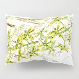 A orchid plant - Vintage illustration Pillow Sham