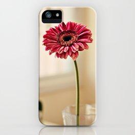 Flower in Window iPhone Case