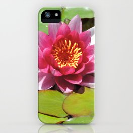 Water Lily at the Mission San Juan Capistrano iPhone Case