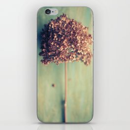 Autumnal Light no.2 iPhone Skin