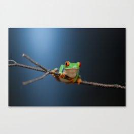 Little Leap Canvas Print