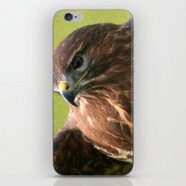 Common Buzzard II iPhone Skin