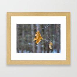 Last Leaves of Fall Framed Art Print