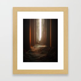 Hall Of Wonders Framed Art Print