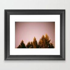 /-/ Framed Art Print