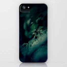 unterwegs_1390 iPhone Case