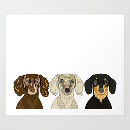 Triple Doxies Art Print