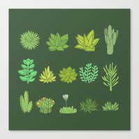 succulents Canvas Prints featuring Succulents by Anna Alekseeva kostolom3000
