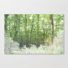 natura 2 Canvas Print