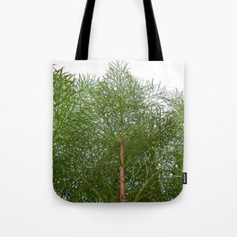 Cosmos Reaching for the Sky Tote Bag
