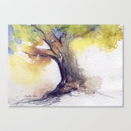 My Tree watercolor by CheyAnne Sexton Canvas Print