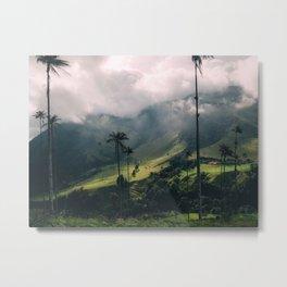 Salento Wax Palms Metal Print