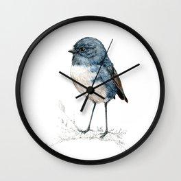Toutouwai, New Zealand Robin bird Wall Clock