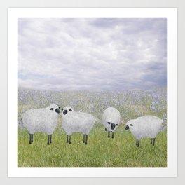 sheep and chicory Art Print