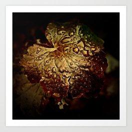 Bronzed Wet Leaf Art Print