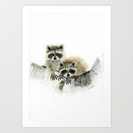 Curious Cubs - raccoons, animals, wildlife, nature Art Print