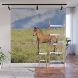 Watercolor Horse 27, Icelandic Pony, Höfn, Iceland, A Standup Foal Wall Mural