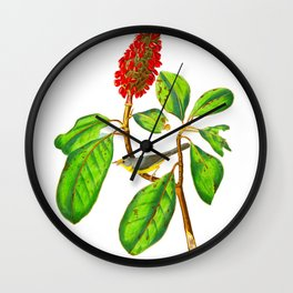 Bonaparte's Flycatcher Bird Wall Clock