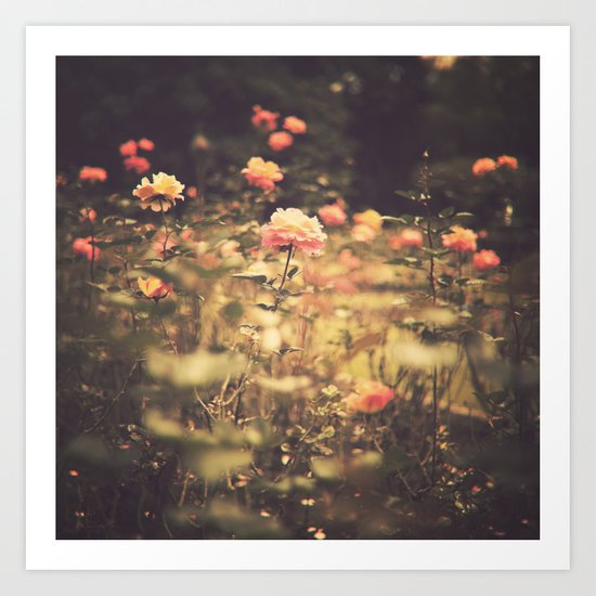 One Rose in a Magic Garden (Vintage Flower Photography) Art Print