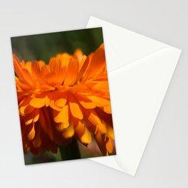 Aroma orange flower Stationery Cards