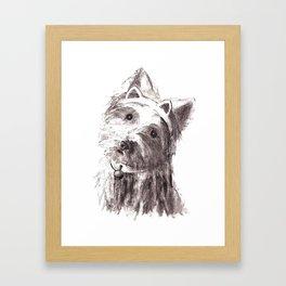 Bon Bon - the cat-like dog Framed Art Print