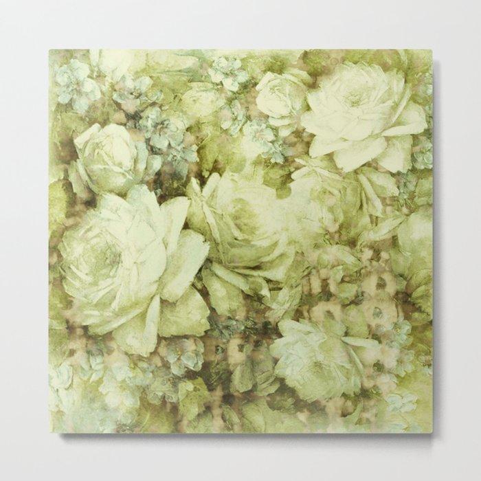 white climbing rose Metal Print