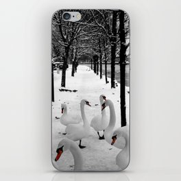 Swans in the snow iPhone Skin