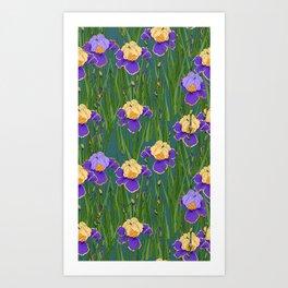 Field with irises Art Print