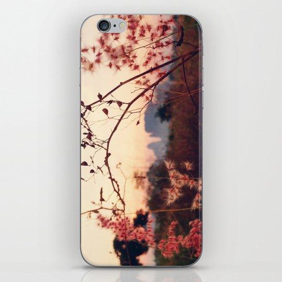 Desert Sakura iPhone & iPod Skin