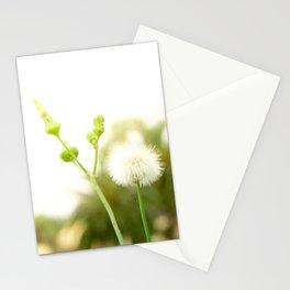 Nature photography dandelion I Stationery Cards