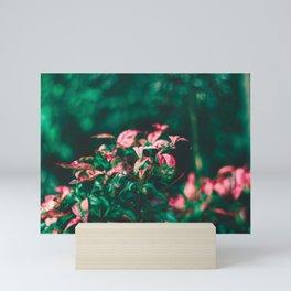 Empath Nature Mini Art Print