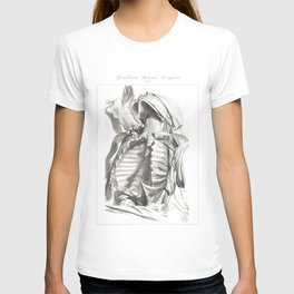Human Anatomy Art Print CLAVICLE STERNUM CHEST Vintage Anatomy, doctor medical art, Antique Book Pla T-shirt